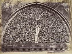 Ahmedabad. Ranee Seepri Ka Musjid [sic for Sidi Sayyid''s Mosque]. Carved stone window